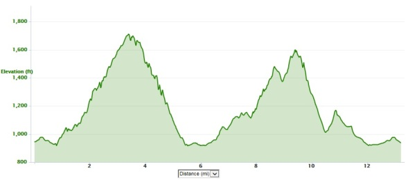 Blue Ridge Half Marathon elevation profile
