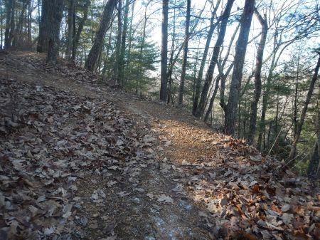 Draper Mountain Trails trail running