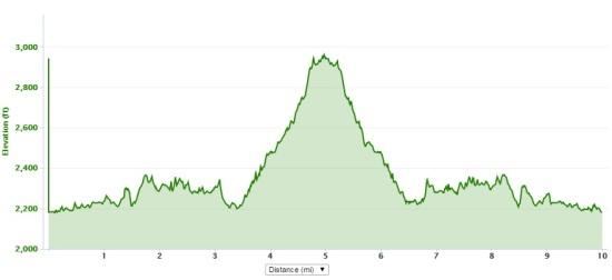 12-12-15 elevation