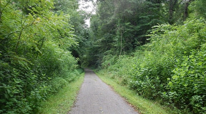 New River State Park Trail
