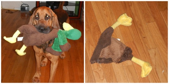 Bloodhound Dog stuffed dog toy