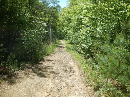 Poverty Creek Trail Pandapas Pond
