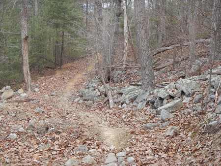draper mountain trails