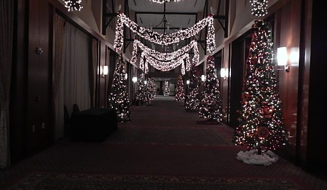 Fashions for Evergreens the Inn at Virginia Tech