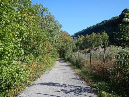 Dora Trail