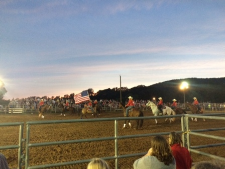 rodeo summer rodeo