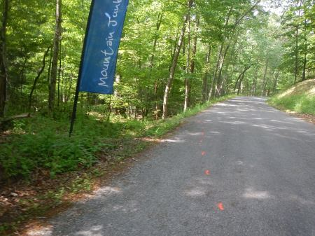 Conquer the Cove 25K Trail Race Carvin's Cove 25K
