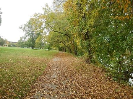 Bisset Park Radford