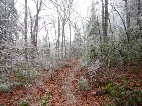 mountain trail running