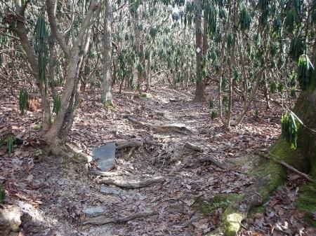 Joe Pye Trail Poverty Creek Trail System Pandapas Pond