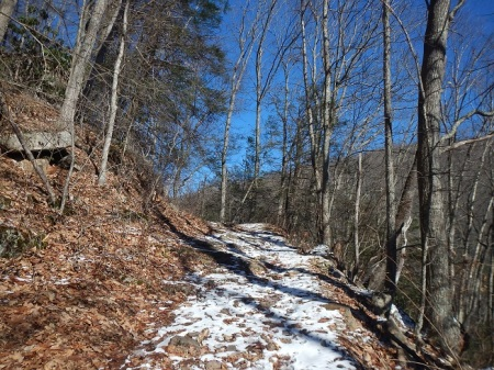Trail Running Cascades