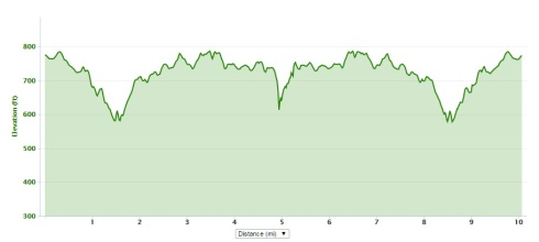 Virginia 10 Miler course elevation profile